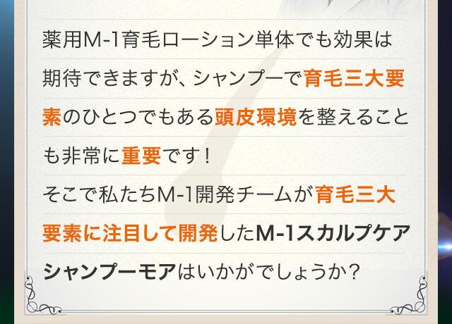 M-1スカルプケアシャンプーモア商品説明画像2