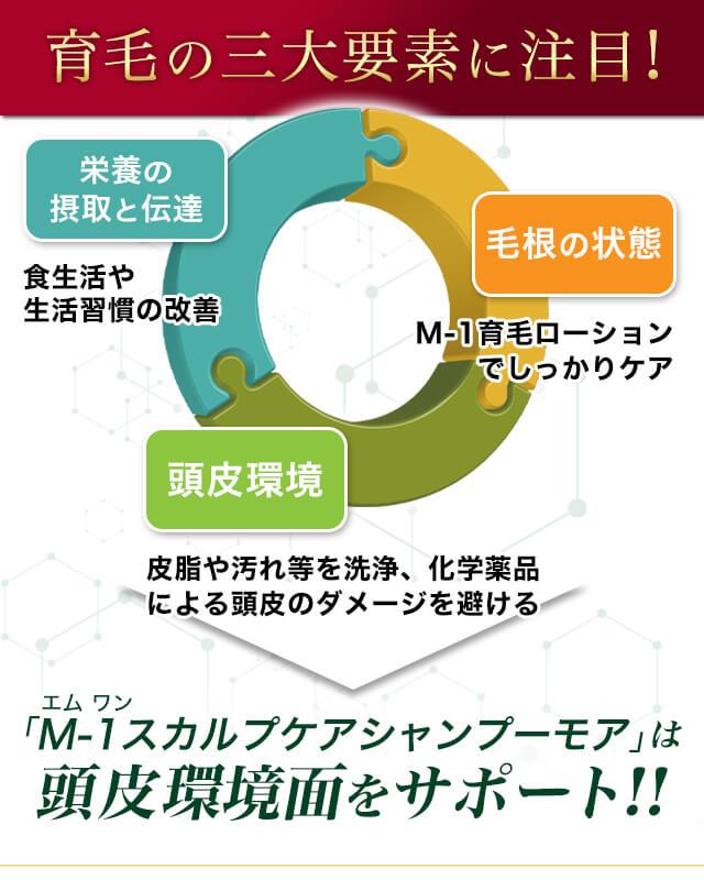 M-1スカルプケアシャンプーモア商品説明画像7
