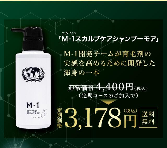 M-1スカルプケアシャンプーモア商品説明画像12